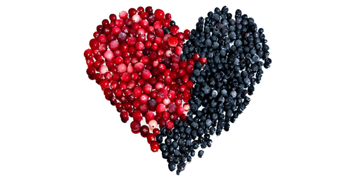 heart-protective-berries
